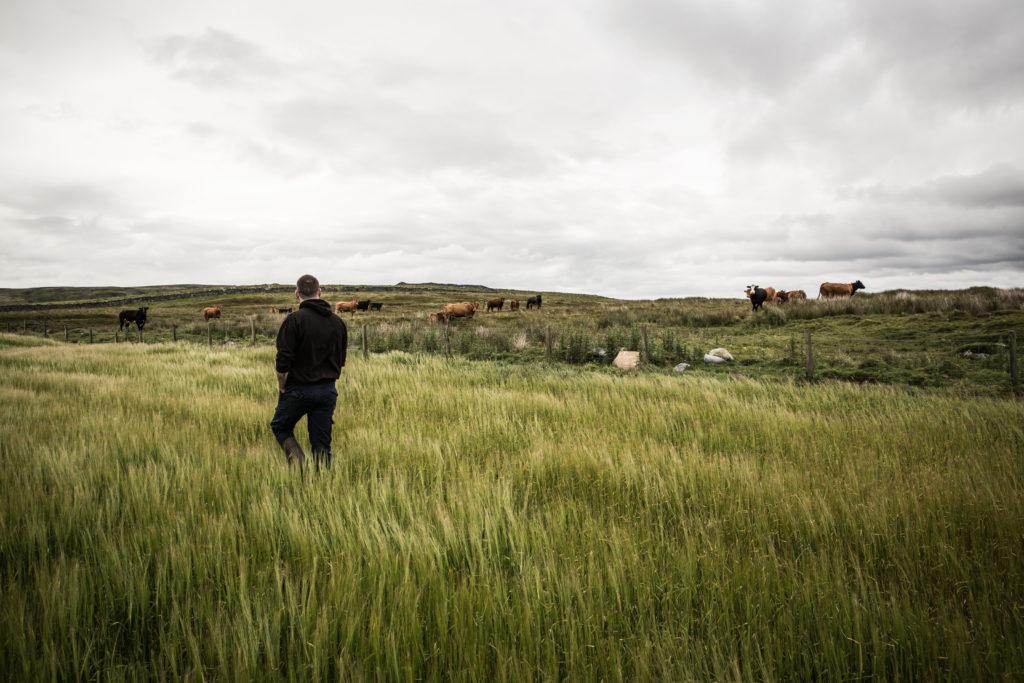 Farming partner Raymond Fletcher at Dunlossit