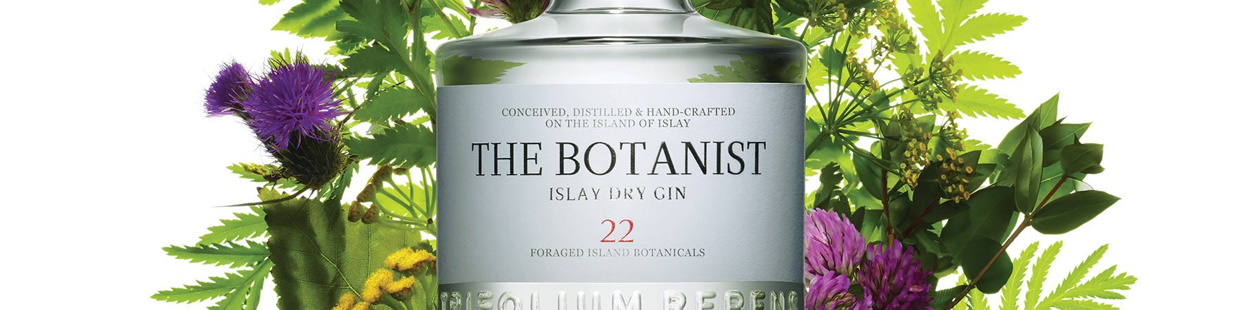 pano-marques-the-botanist
